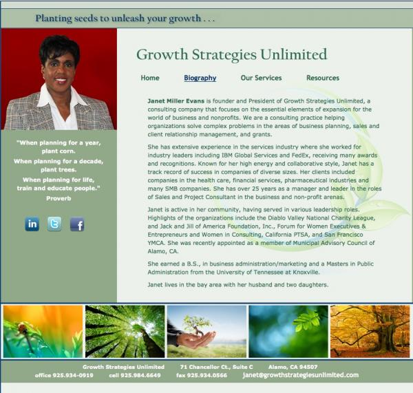 Growth Strategies Unlimited website image