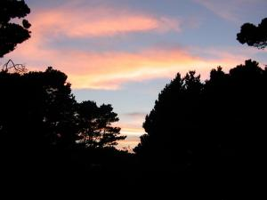 MacKerricher Sunset SkyMendocino Coast 2005